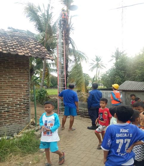 laporan-kejadian-kebakaran-di-kecamatan-keramatwatu